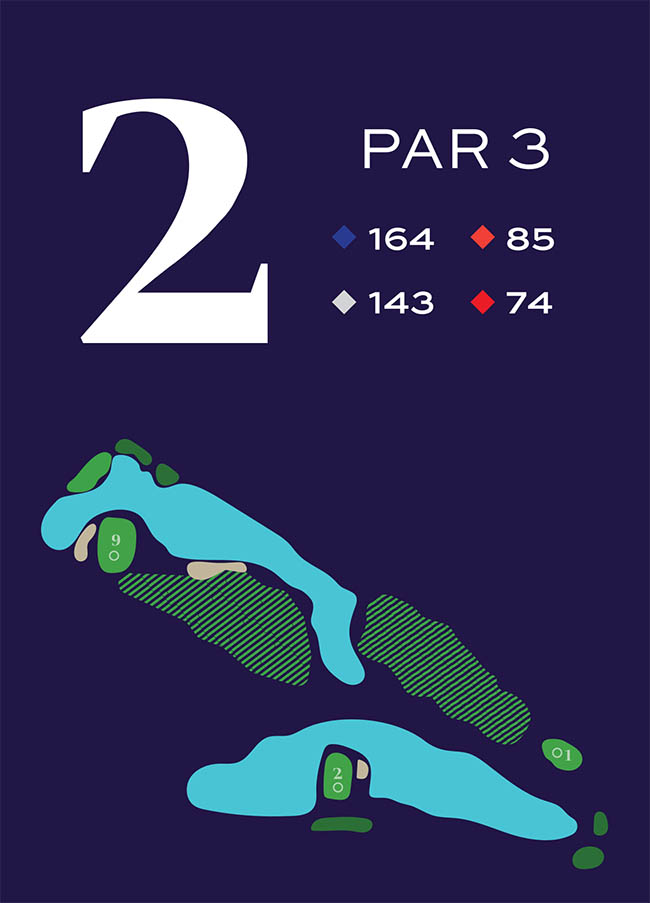 Hole 2 Distances